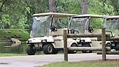 wdw-the-cabins-at-ft-wilderness-recreation-electric-cart-rentals-170x96.jpg