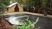 wdw-campsites-fort-wilderness-rooms-preferred-campsite-170x96.jpg